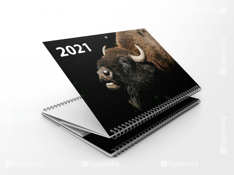 Календарь квартальный - Символ года